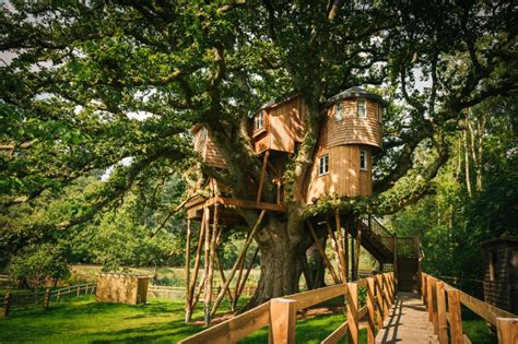 treehouse wedding venue west uk luxury tree house fox and hounds hotel