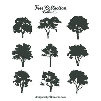 tree silhouette vectors photos and psd files free download