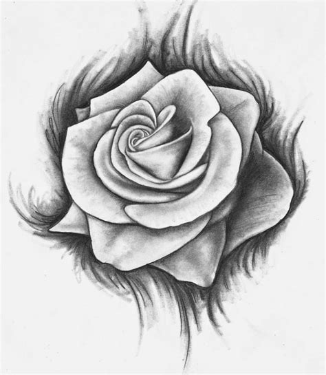 Drawing Roses by Pencil And In Color