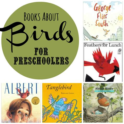 the someday birds books books about birds for preschool