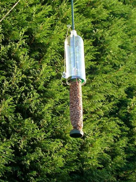 diy squirrel proof bird feeder