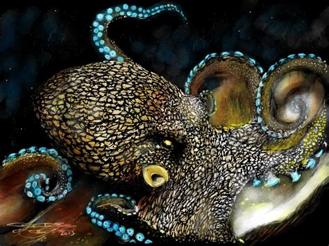 what color are octopus artwork by michael acosta octopus color done on my