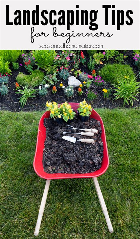 landscaping tips 50 garden tips and hacks to turn you into a gardening