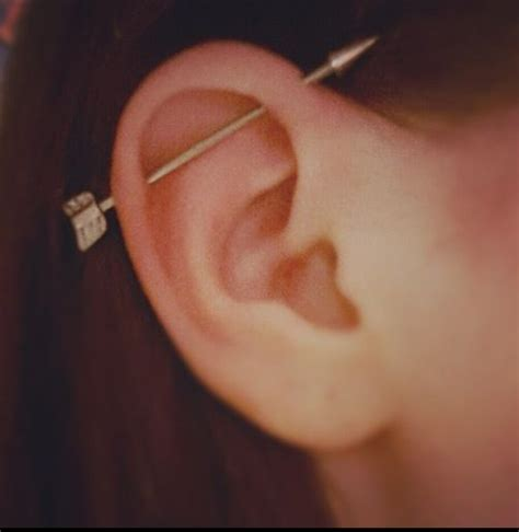 top ear bar 17 best images about scaffold piercing on pinterest