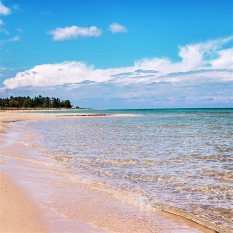 beaches in michigan 10 beaches that will make you want to plan a trip to the great lakes immediately