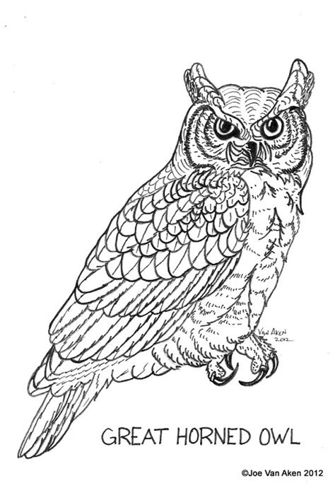horned owl coloring page great2 free coloring pages