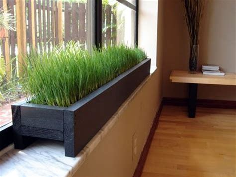window sill planter indoor windowsill planter with grass for the cat home decor