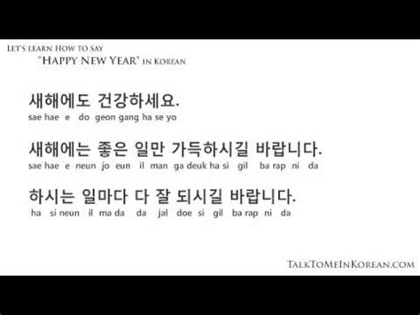 happy new year wishes in korean how to wish a happy new year in korean by talktomeinkorean