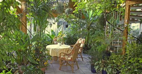 schildkr ten im garten palmen f 252 r den garten yucca rostrata sehr sch ne