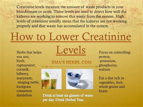 creatine and high blood pressure how to lower creatinine levels