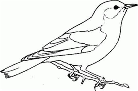 bluebird coloring pages preschool p 225 jaros para colorear
