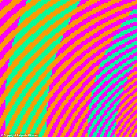 same color illusion can you tell what colours these spirals are daily mail