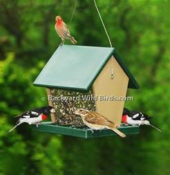 Bird Feeder Recycled Hopper Bird Feeder
