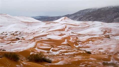 sahara snowfall world rare snow falls in the sahara lalalay us