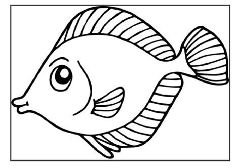 fish coloring pages for kindergarten 49 fish coloring pages 5022 via sedelxyz butterfly fish