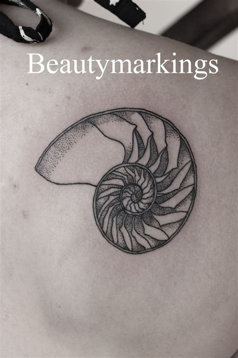nautilus tattoo best 20 nautilus ideas on geometry