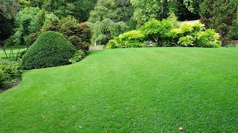 Alluring Garden Waterfall And Vivid Green Lawn Also Small