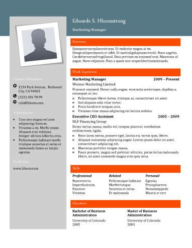 Resume Template Hloom by Free Resume Templates For Word The Grid System