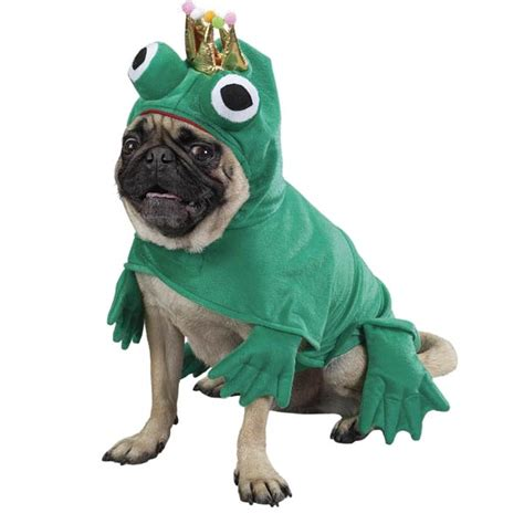 frogs to dogs frog costume by zack zoey baxterboo