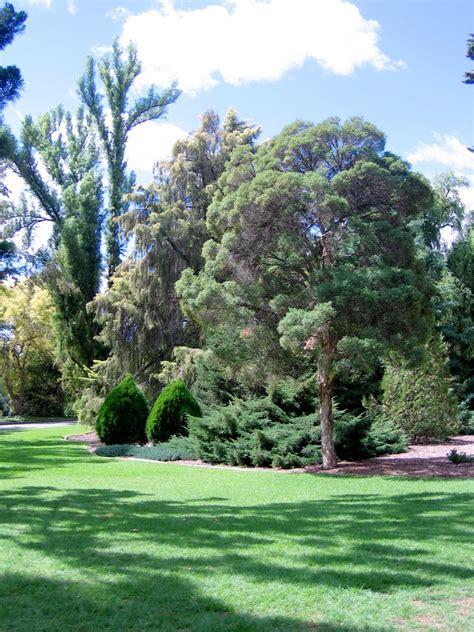 Botanic Gardens Wagga Wagga Botanical Gardens Wagga Wagga Australia 2006 Photos