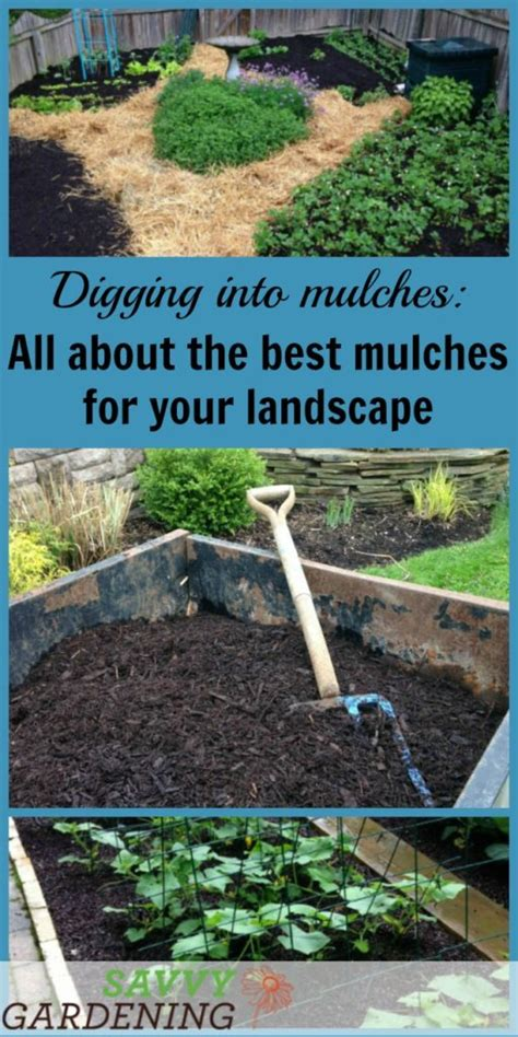 garden mulch types digging into mulches types of landscape mulch for your garden