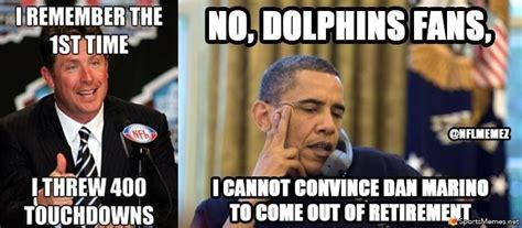 Funny Miami Dolphins Memes - image gallery nfl dolphins memes