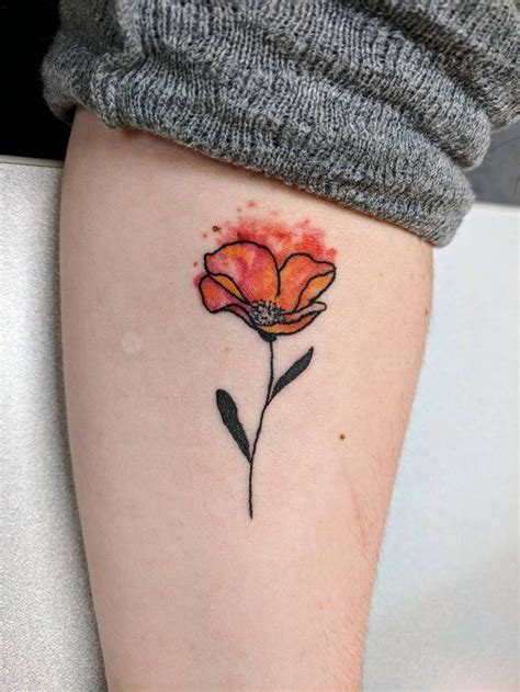 watercolor tattoos tallahassee 38 best poppy images on ideas