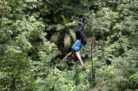 tarzan swings zip blast picture of arenal canopy adventure