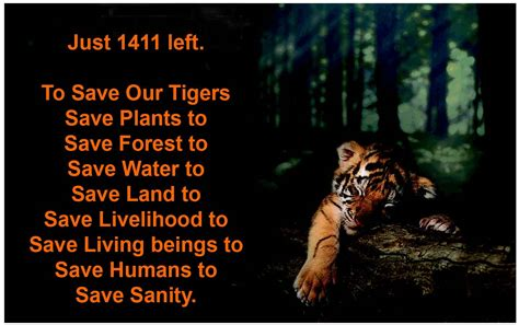 Save Tiger Essay In by Archetypes India Save Our Tigers Caign Corrected