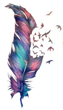 feather tattoo png transparent feather tumblr