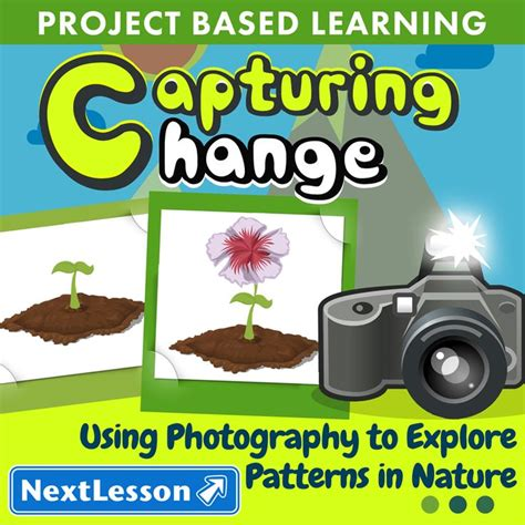 patterns in nature art project 38 best images about science on pinterest 4th grade