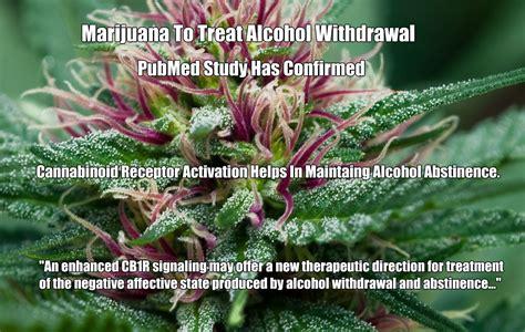 Cannabanoid Detox by Marijuana To Treat Withdrawal Cannabinoid