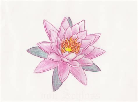 pink lotus flower tattoo design by vonschloss on deviantart