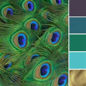 peacock colors best 25 peacock color scheme ideas on peacock