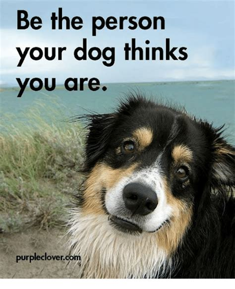 be the person your thinks you are be the person your thinks you are purple clovercom meme on sizzle