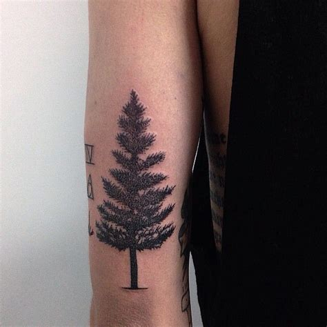 simple nature tattoos 19 best s tree images on tree