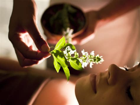 aromaterapia para la curacion los beneficios de la aromaterapia luxury spa