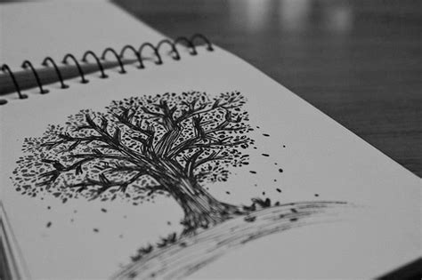 imagenes hipster de arboles photography art tree black and white draw vida negro hojas