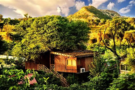 top  tree houses resorts experience  india  resorts
