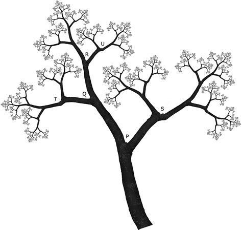 line drawings trees tree line at tree line drawing clipart best tree line