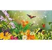 Many Butterflies On The Flowers In Garden