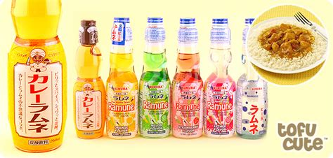 Would You Drink This Curry Soda by Buy Ramune Japanese Soda Drink Katsu Curry At Tofu