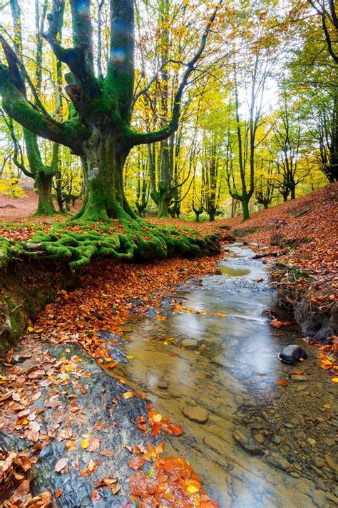 imagenes impresionantes paisajes naturales πάνω από 25 κορυφαίες ιδέες για imagenes de paisajes
