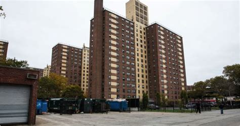 tilden houses nycha development in brownsville brooklyn brownsville partnership pinterest