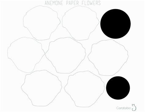 my beautiful anemone paper flowers carta forbici gatto