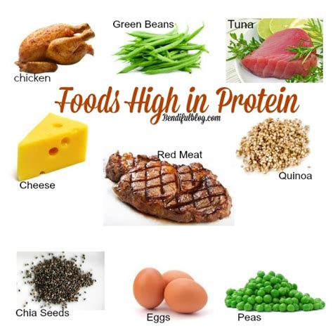 5 proteins found in which foods contain protein biggies boxers