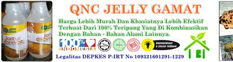Qnc Jelly Gamat Untuk Eksim obat eksim kering dan basah herbal obat alami