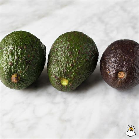 how to tell if is in how to ripen avocados fast 3 tested methods