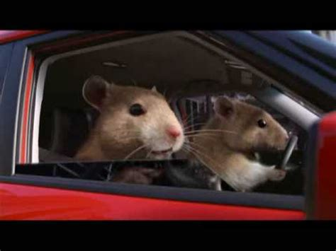 Kia Soul Hamster Song New 2010 Kia Soul Hamster Commercial Fort By
