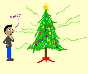 smelly tree